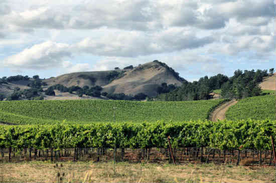 sonoma county california 2